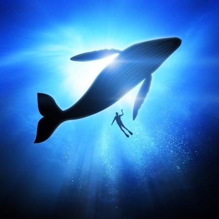 279 I Am The Humpback Whale